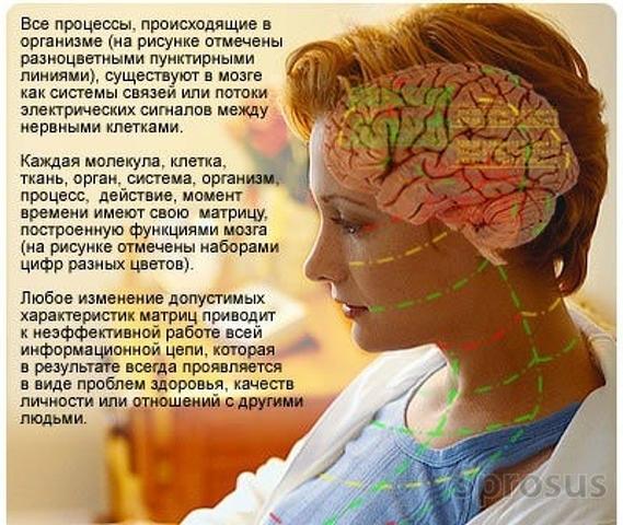 Профессиональная лечебно-диагностическая IT-система восстановительной медицины/Эксклюзив - 1
