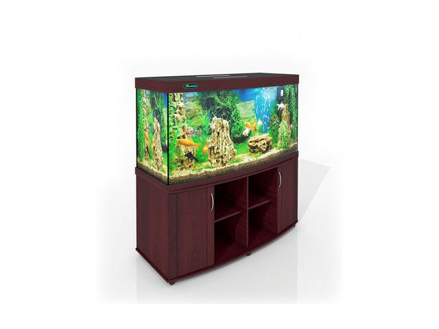 ZelAqua магазин аквариумов и террариумов в Москве - 4