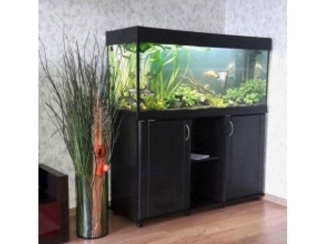 ZelAqua магазин аквариумов и террариумов в Москве - 5