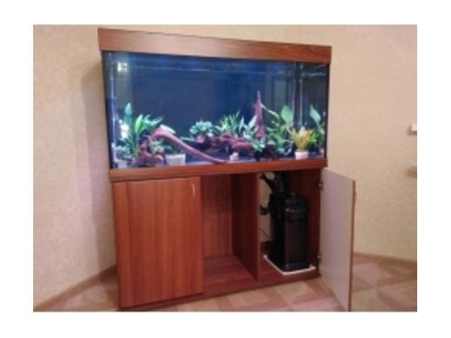 ZelAqua магазин аквариумов и террариумов в Москве - 6
