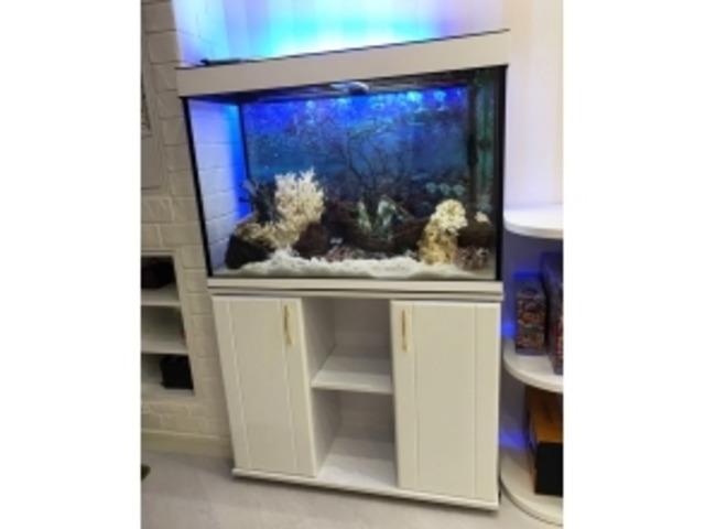 ZelAqua магазин аквариумов и террариумов в Москве - 7