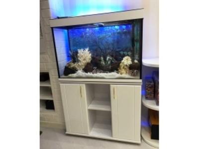 ZelAqua магазин аквариумов и террариумов в Москве - Изображение 7