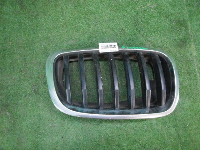 Решетка радиатора правая BMW X5 E70 (2006-2013) 51137171396 - 1